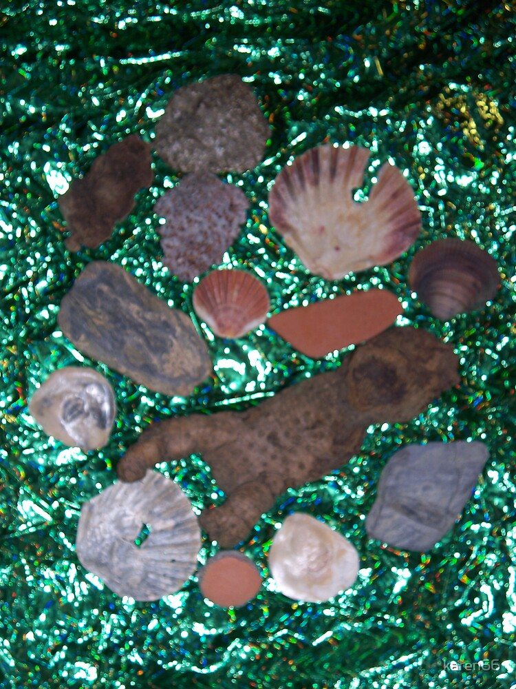 European Shells on Green by karen66