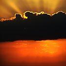 Rays of Light by Jamie Lee