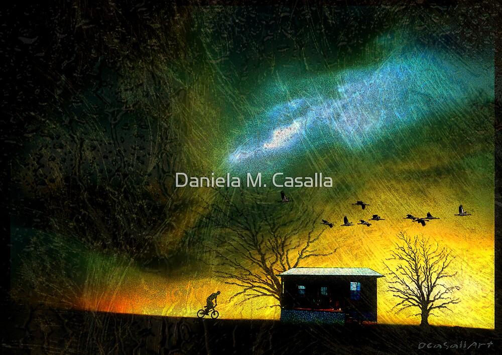 Refugio - Shelter by Daniela M. Casalla