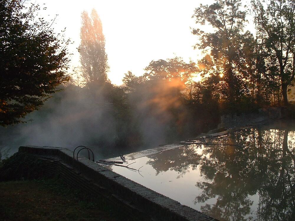 Misty morning light by Weddel