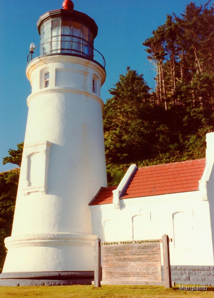 Heceta Head Lighthouse by Marylamb