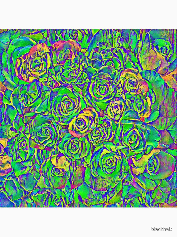 Roses by blackhalt