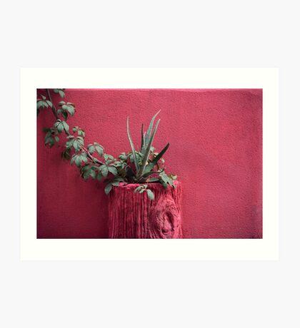 Rosa und Pflanze Kunstdruck