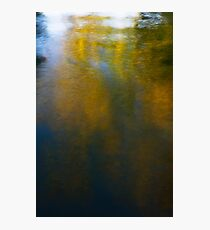 impressionism Photographic Print
