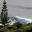 Surfers New South Wales Australia by Alison Murphy