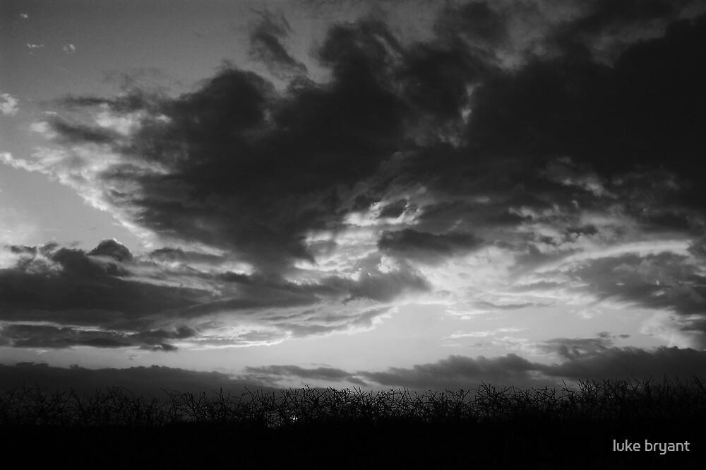 The Wind Rises... by luke bryant