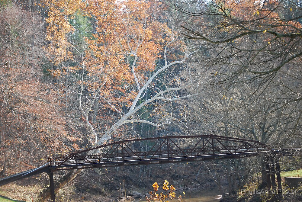 Bridge in Autumn by PhyllisAnne Pesce