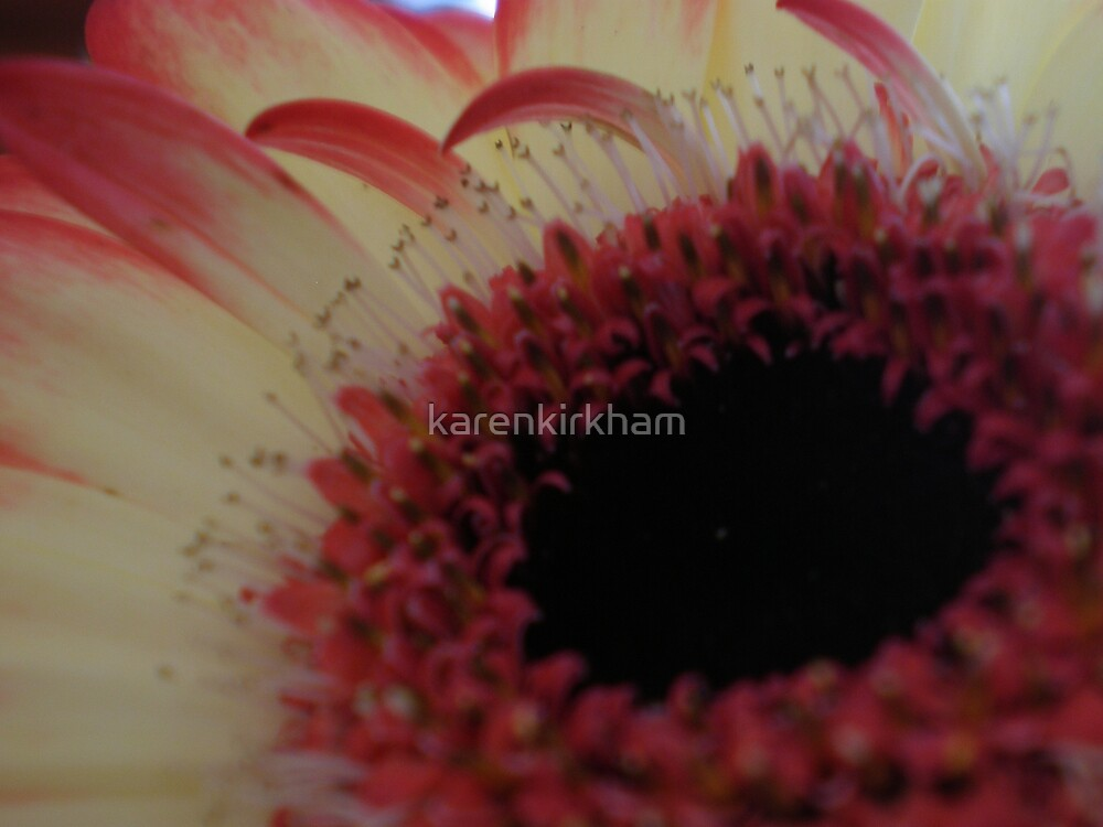 ....and caring by karenkirkham