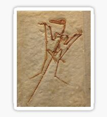 Pterodactyl Fossil Image Sticker