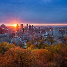 Montreal Sunshine by MIRCEA COSTINA