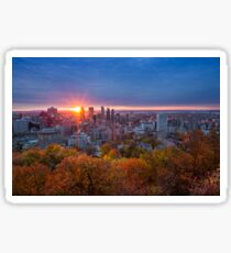 Montreal Sunshine Sticker