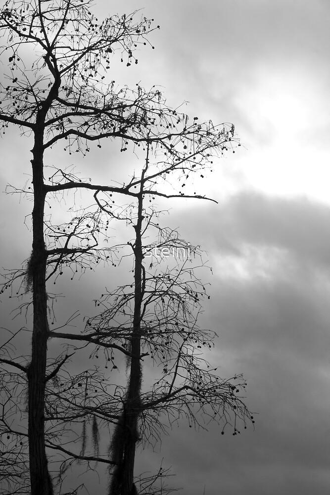 Overcast by steini