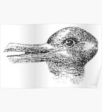 Rabbit, Duck, illusion, Is it a Rabbit or is it a Duck? Optical illusion, visual illusion Poster