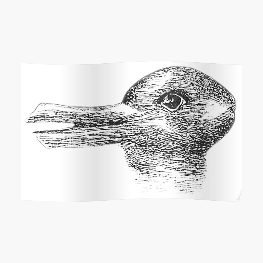 Rabbit, Duck, illusion, Is it a Rabbit or is it a Duck? Optical illusion, visual illusion. Black on White Poster