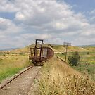 Jezre'el Valley Train - End of the Line by Uri Baruch