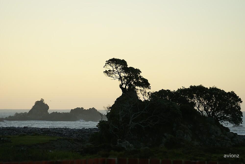 Bay of Plenty by avionz