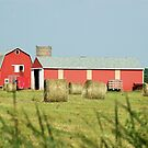 The Red Barn by cherylc1