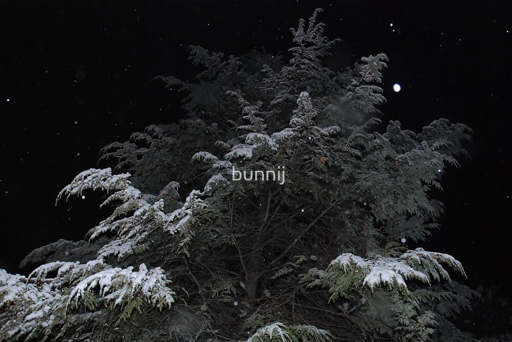 Snow Fall by bunnij