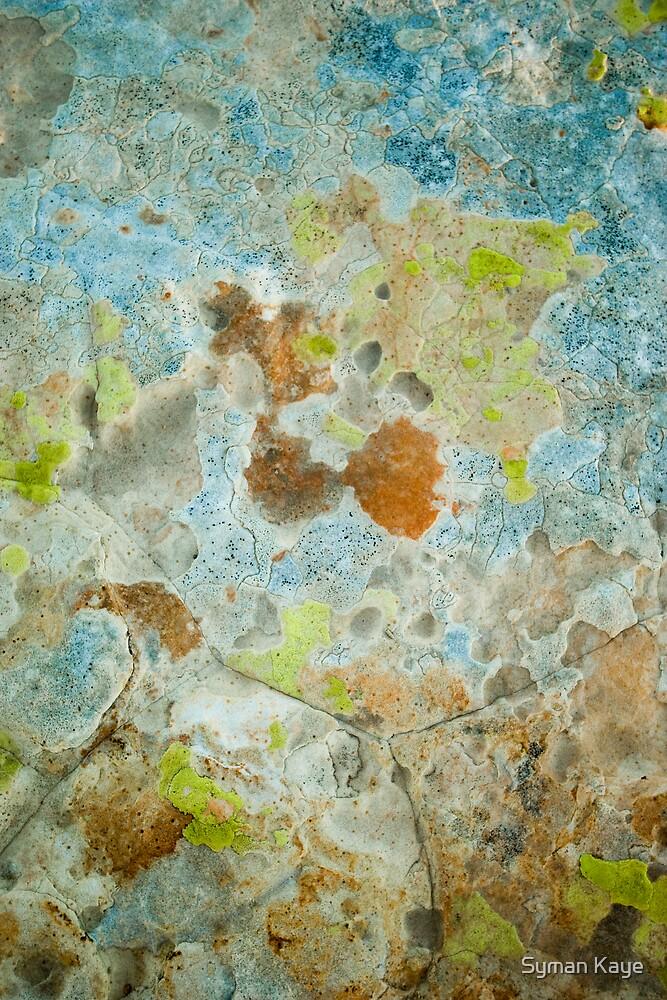 Lichen Covered Rock by syman