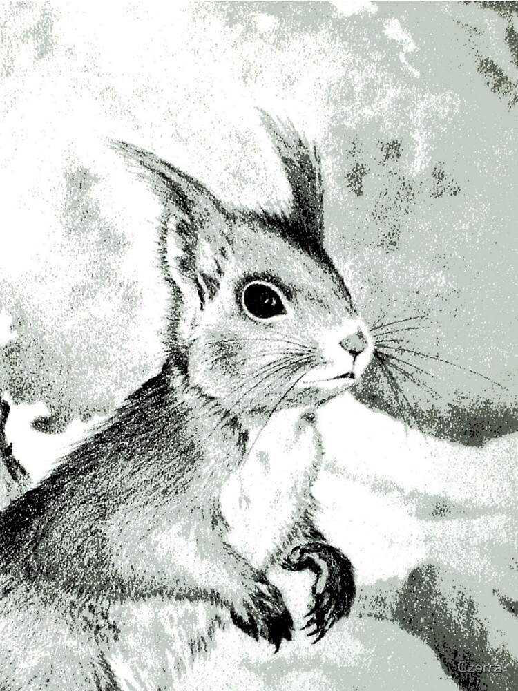 Squirrel by Czerra