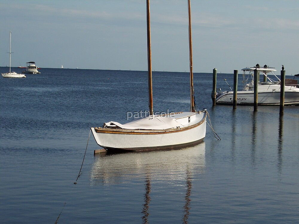 Sailboat on Biscayne Bay by pattysole