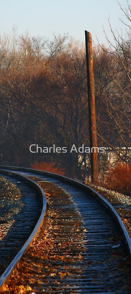 Lifeless Tracks by Charles Adams