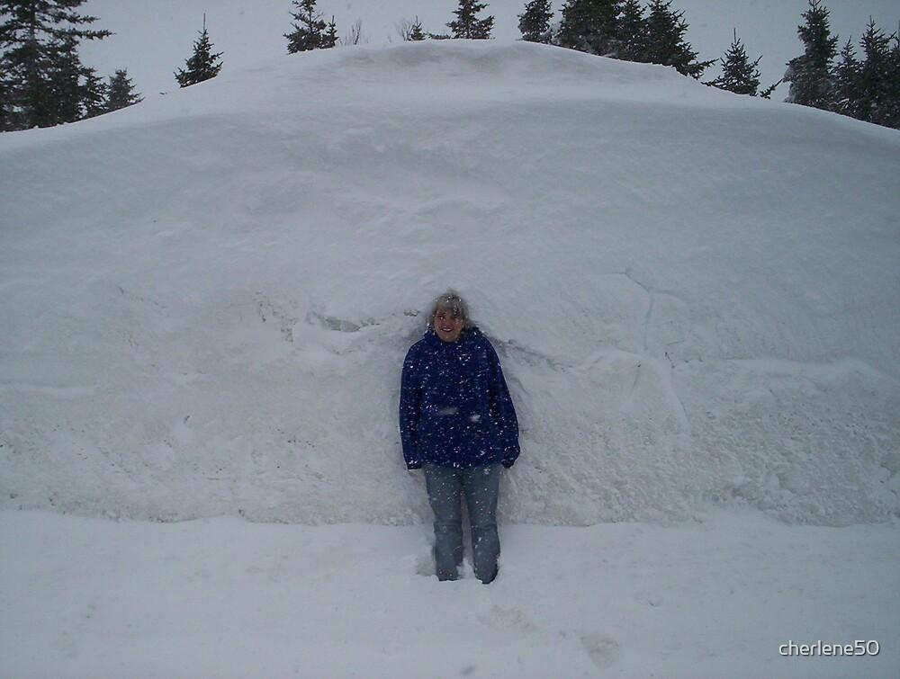 mountain of snow by cherlene50