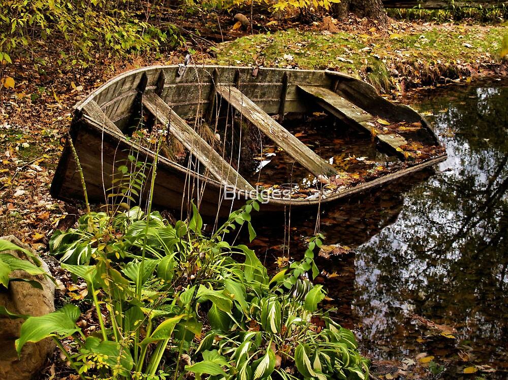 Swamped by Bridges