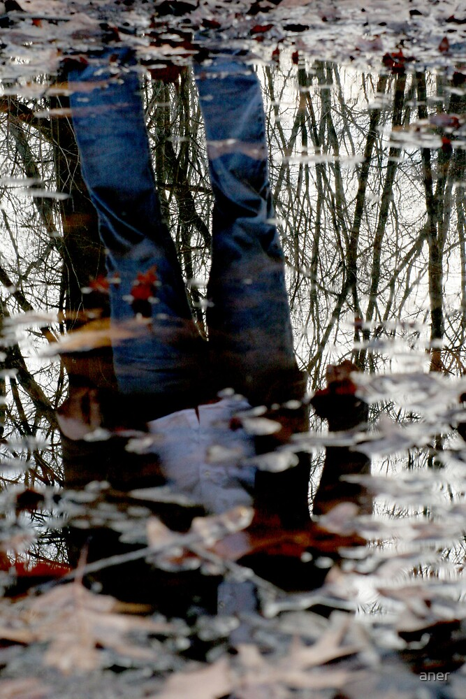 Cold Reflection by aner