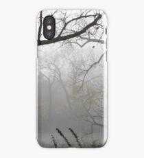 Scenes of Fall Mist iPhone Case/Skin