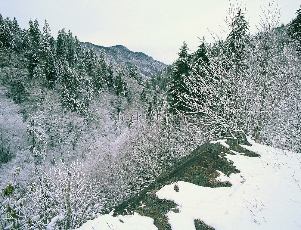 WINTER,NEWFOUND GAP by Chuck Wickham
