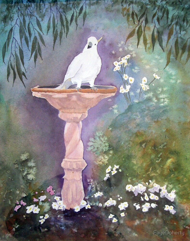 My friendly Cockatoo comes for a drink by FayeDoherty