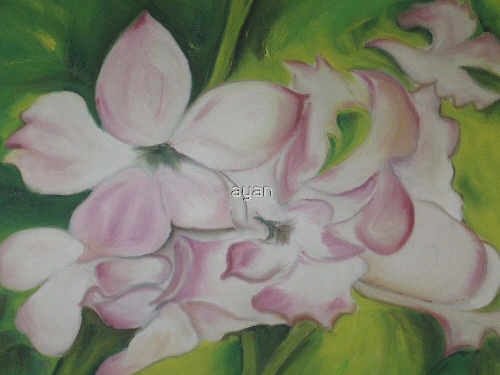 flower Size40x30 cm by ayan