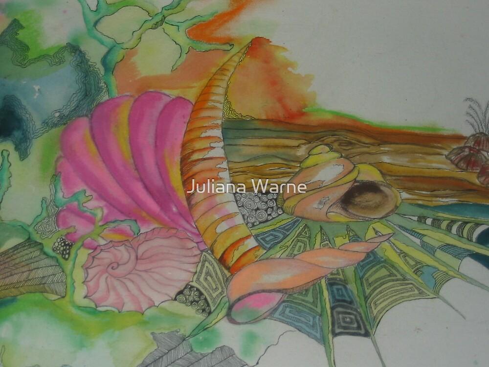 Shesellsseashells by Juliana Warne