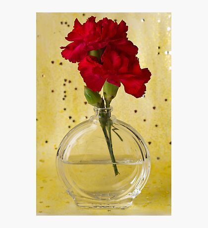 Red Carnations Still Life Photographic Print