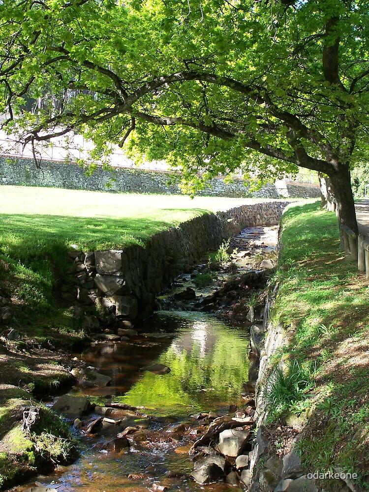 Creek at Port Arthur Tassie by odarkeone