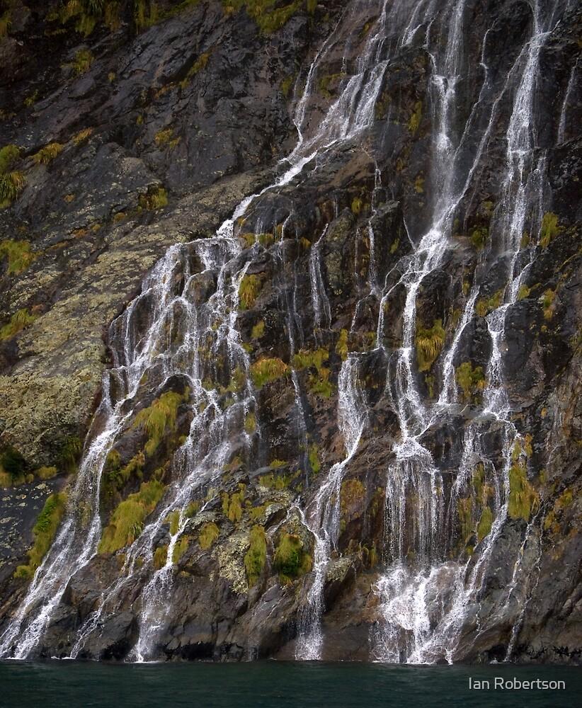delta falls by Ian Robertson