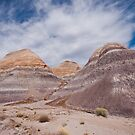 Badlands Formation at Blue Mesa by Jeff Goulden