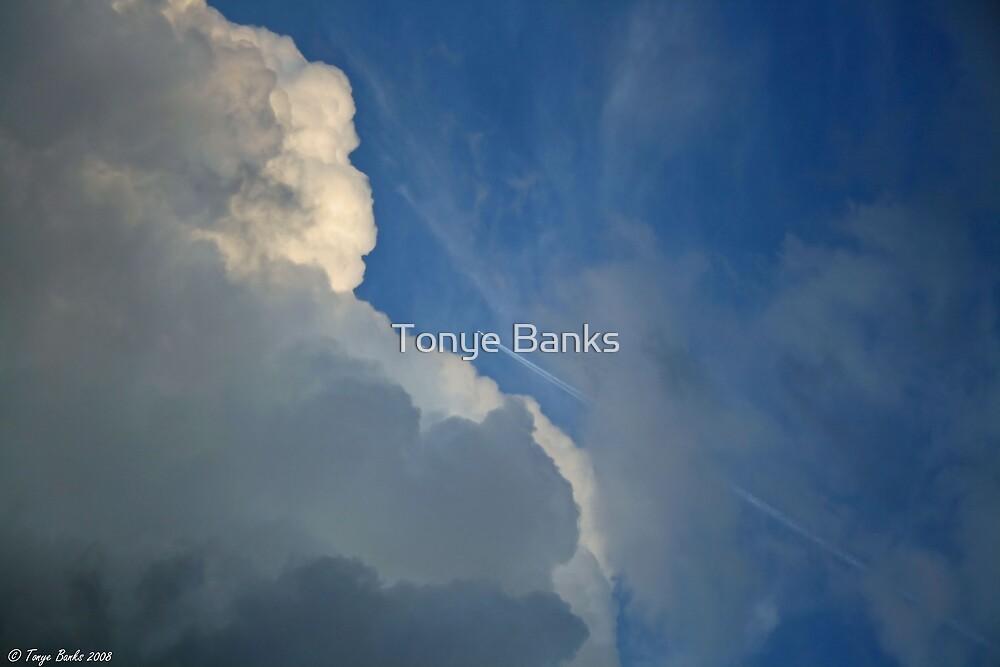 Wild Blue Yonder by Tonye Banks