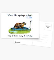 Turtle in a leaking pool Postcards