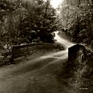 Swann Mill Road by © Joe  Beasley IPA