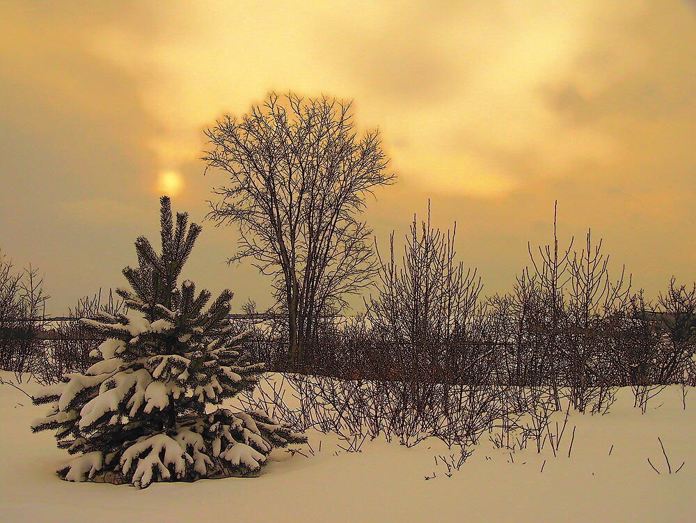 Winter's Sun Sets by Gene Cyr