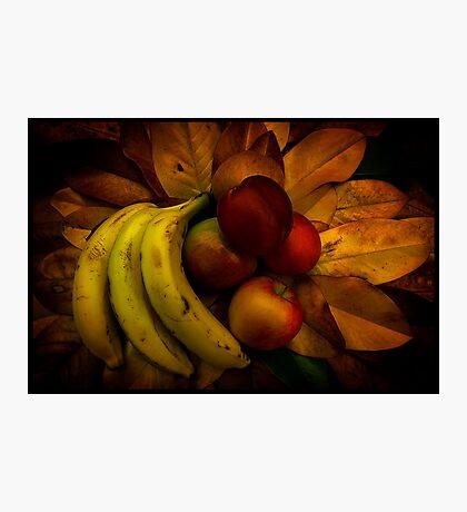 Fruit on Magnolia leaves Photographic Print