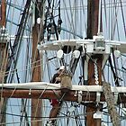 In the Rigging by Jim Sugrue