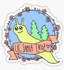 UC Santa Cruz Color Sticker