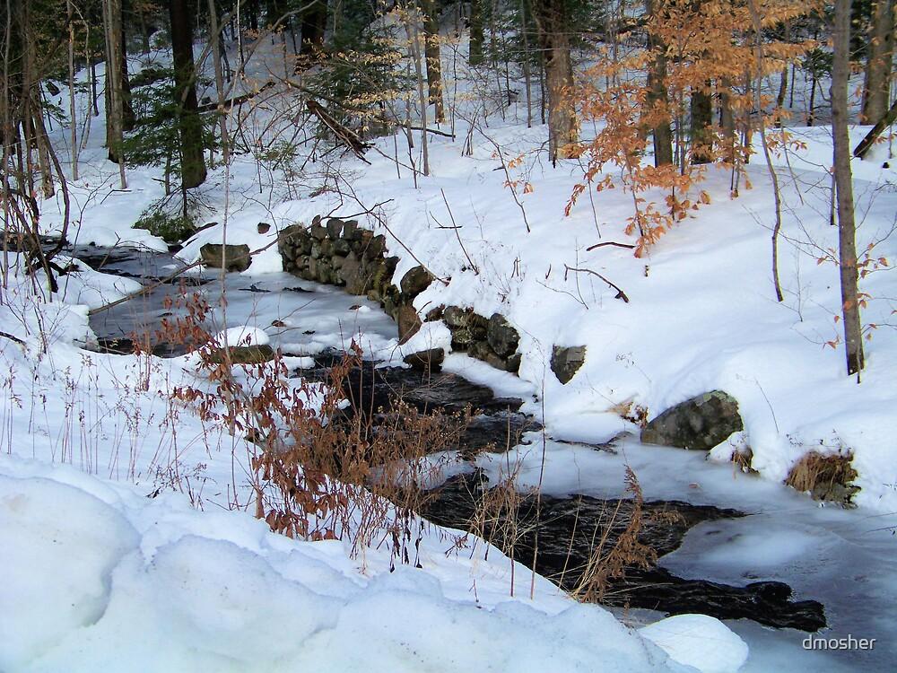 WINTER CREEK by dmosher
