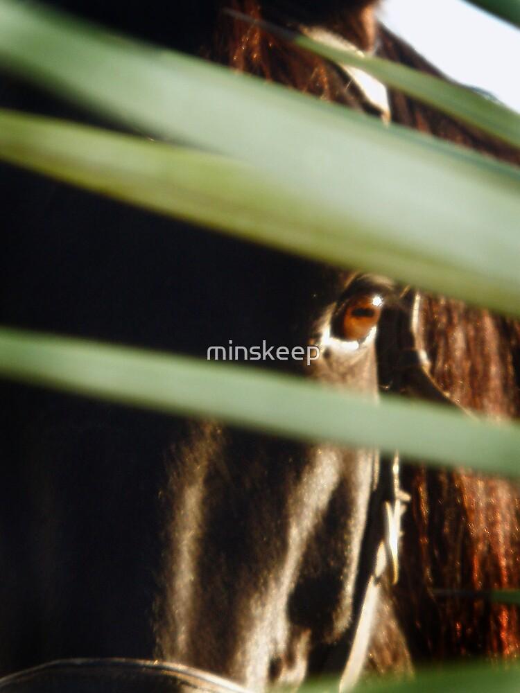 Mavericks Eye by minskeep