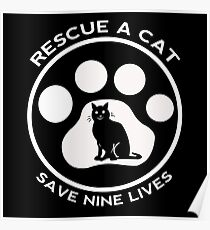 rescue cat  Poster