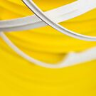 Yellow and White by Steve Kaiser