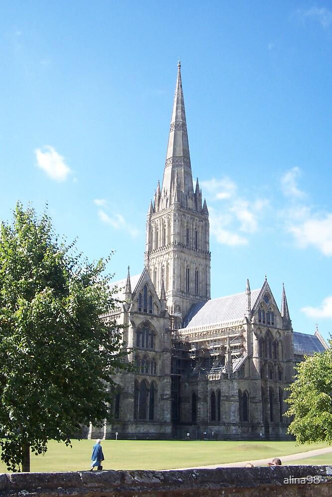 Salisbury Cathedral by alina98